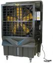 Охладитель воздуха Master BC 220 в Перми